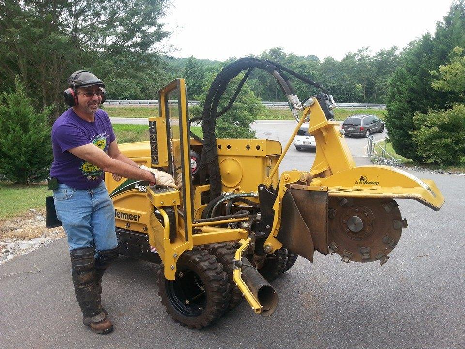 Lynchburg VA tree service