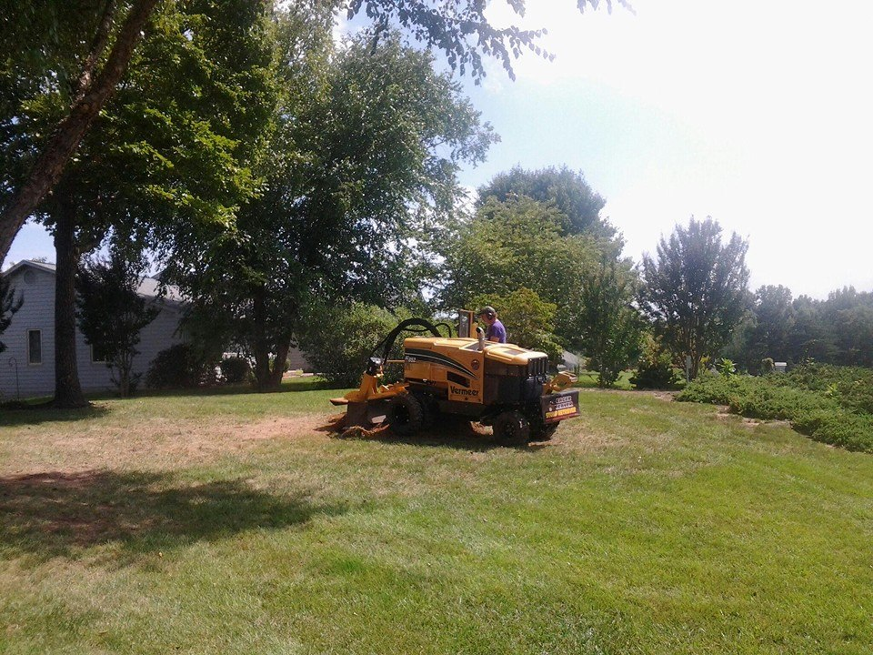 Lynchburg stump grinding services