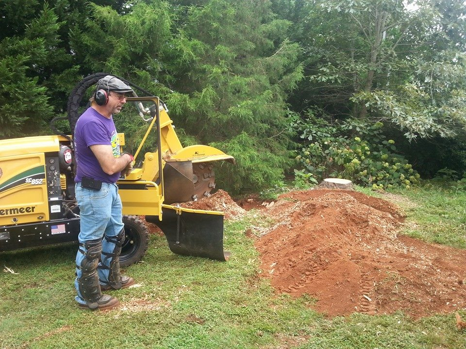 stump grinding company Lynchburg VA