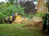 stump grinding Lynchburg VA